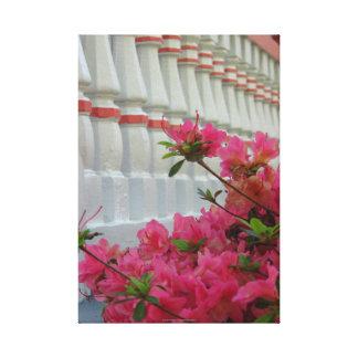 Pink Azaleas by Cottage Porch, Martha's Vineyard Canvas Print