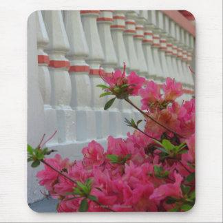 Pink Azaleas by Cottage Porch, Martha's Vineyard Mouse Pad