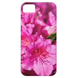Pink Azaleas iPhone 5 Cover