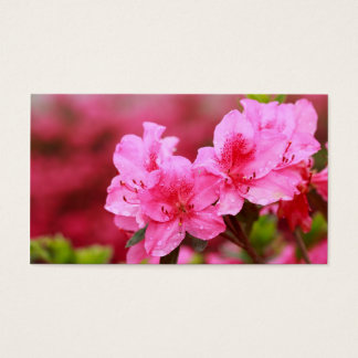 Pink Azaleas - Pocket calendar Business Card