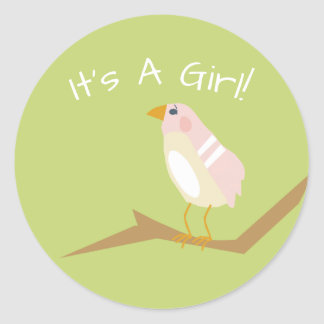 Pink Baby Shower Chic Nature Girl Bird Sticker