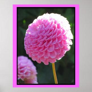 Pink Ball Flower Print