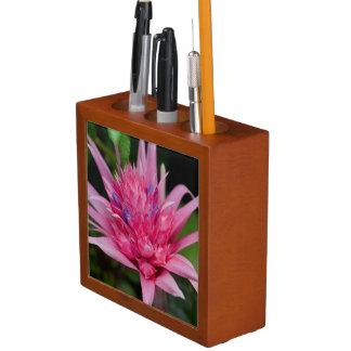 Pink Beauty Desk Organiser