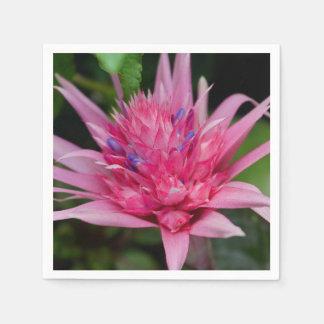Pink Beauty Paper Napkins