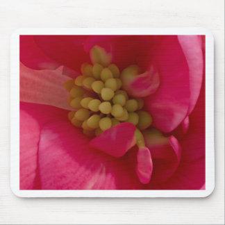 Pink Begonia Stamen Macro Mouse Pad