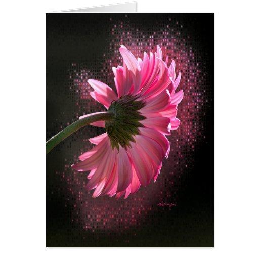 Pink Berber Daisy Card