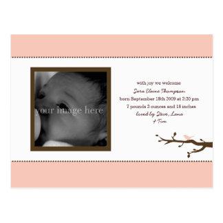 Pink Bird Baby Announcement Postcard