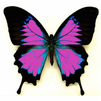 Pink Black and Blue Butterfly For A Friend Photo Sculpture Key Ring