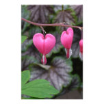 Pink Bleeding Hearts Stationery Design
