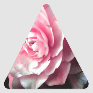 Pink Bloom with Black Background Triangle Sticker