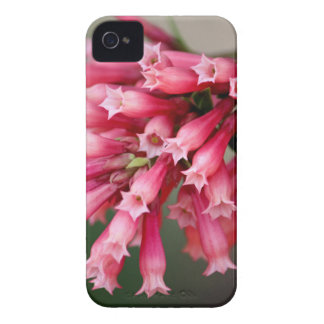 Pink Blooms Case-Mate iPhone 4 Case