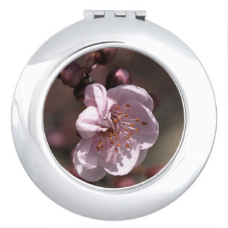 Pink Blossom Compact Mirror