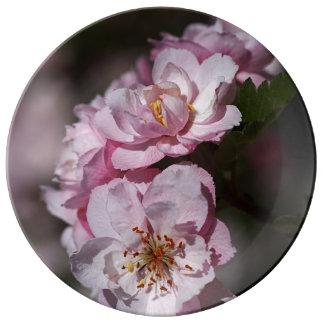 Pink Blossom Display Porcelain Plate Large