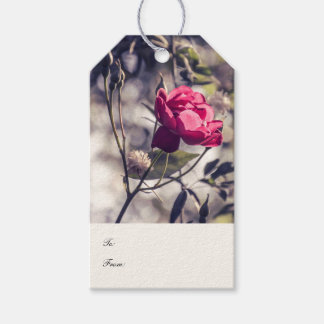 Pink Blossom   Gift Tag
