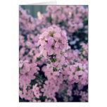 Pink Blossom notecard, blank inside, pretty Card