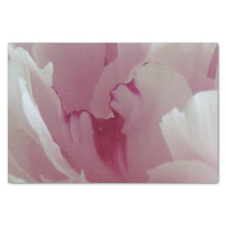 Pink Blossom Tissue Paper