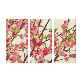 Pink Blossoms - 3 Panel Canvas Canvas Print