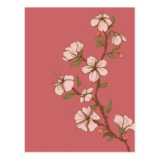 Pink Blossoms on Deep Rose Postcard