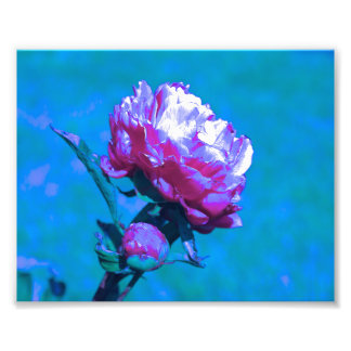 Pink & Blue Neon Photo Art