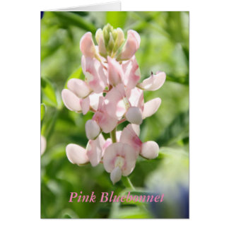 Pink Bluebonnet Greeting Card