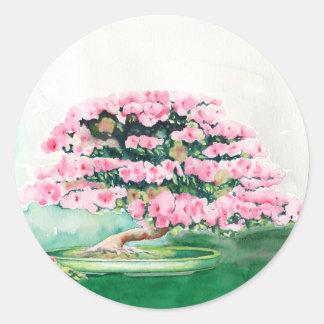Pink Bonsai Classic Round Sticker