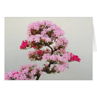 Pink Bonsai Tree Card
