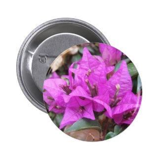 Pink Bougainvillea Flowers Button