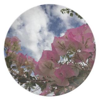 Pink bougainvillea plate