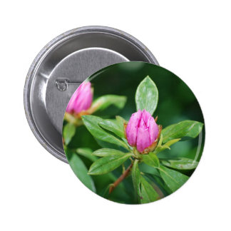 pink buds pinback buttons