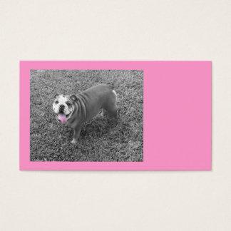 pink bully