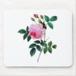 Pink Cabbage Rose by Pierre Joseph Redoute Mouse Pads