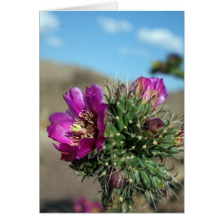 Pink Cactus Flower (Blank Card) Greeting Card