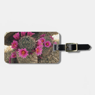 Pink Cactus in Bloom Luggage Tag