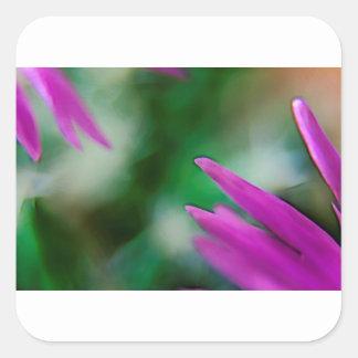 Pink Cactus Petals Square Sticker