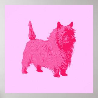 Pink Cairn Terrier Poster