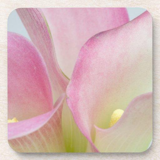 Pink Calla Lilies Coaster