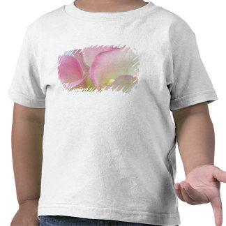 Pink Calla Lilies Shirt
