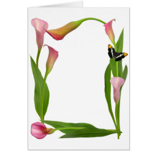 Pink Calla Lily Butterfly Card