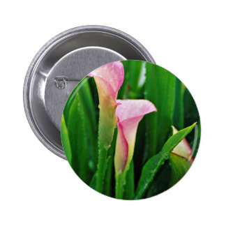 Pink calla lily flowers pins