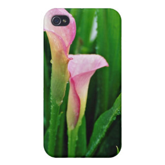 Pink calla lily flowers cases for iPhone 4