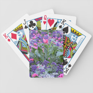 Pink calla lily in spring garden deck of cards