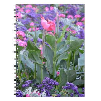Pink calla lily in spring garden notebooks