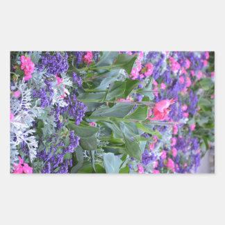 Pink calla lily in spring garden rectangular sticker