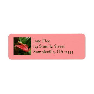 Pink Calla Lily Return Address Label
