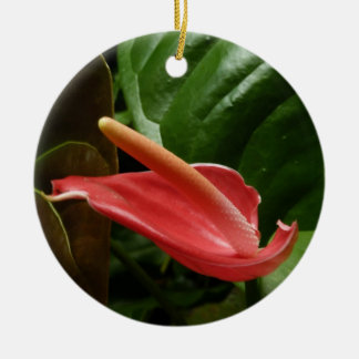 Pink Calla Lily Round Ceramic Decoration