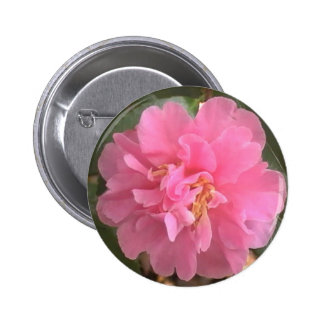 Pink Camellia Pinback Button