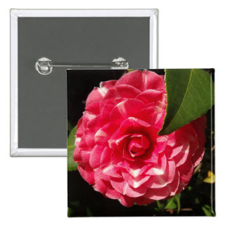pink camellia pinback buttons
