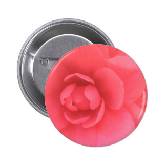 Pink Camellia Buttons