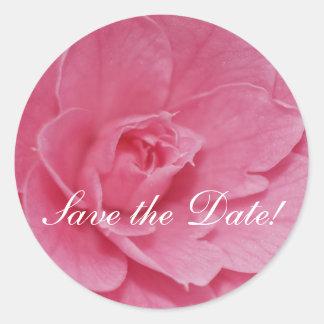 Pink Camellia Blossom Round Sticker