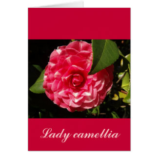 pink camellia greeting card